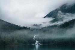 Highland creek flows through forest and flows into mountain lake. Ghostly foggy landscape with alpine lake and dark forest among low clouds. Atmospheric scenery with coniferous trees in dense fog.