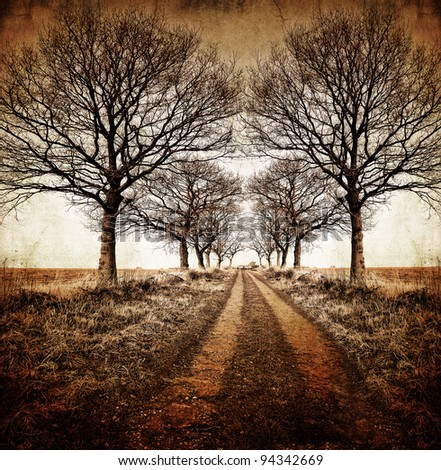 highly manipulated, textured and toned image of a winter farm track through an avenue of leafless trees to give a vintage, atmospheric appearance.