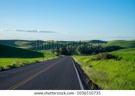 Highway among wheat fields in the Palouse region of eastern Washington state #1036510735