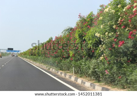 Highway divider plants on outer ring road Highway road Hyderabad  #1452011381