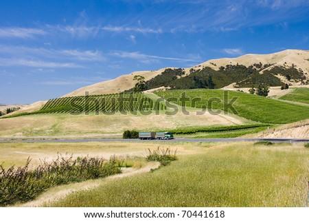 Highway goes through vineyard