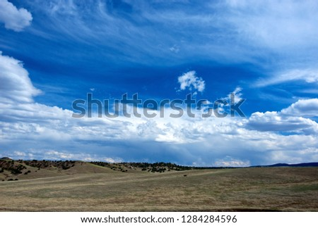 Highway 78, New Mexico, High alpine grasslands and clouds. Grasslands with one cow. #1284284596