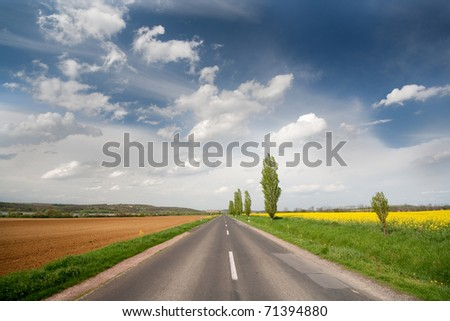 highway with rapeseed and blue sky