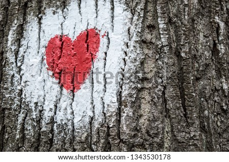 Hike mark painted on tree bark, hiking signs, hiking marks. White circle and red heart - hike path symbol. Travel route sign.  #1343530178