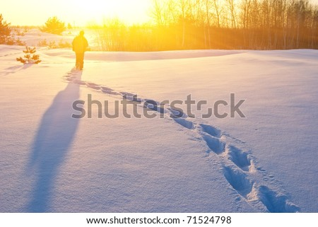 hiker in a winter evening plain at the sunset