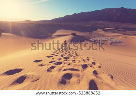 Stock Photo Hiker in sand desert. Sunrise time.