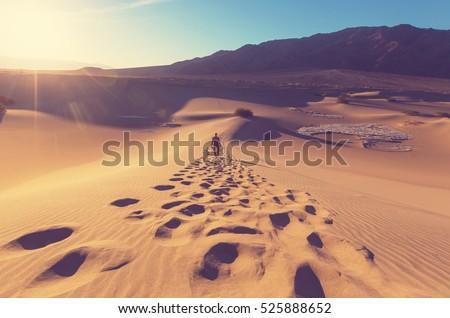 hiker in sand desert. sunrise...