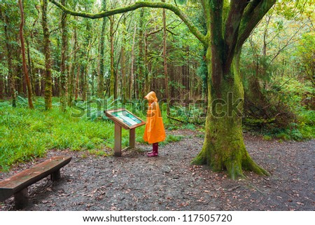 Hiker in the rain looking at description sigh in the  forest on a rainy day wearing an orange raincoat and red rubber  wellington boots - stock photo