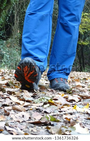 hiker, man walking in the forest in autumn #1361736326