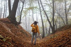 Hiker with backpack standing in fog at forest. Woman hiking in autumn misty woodland. Exploration of nature