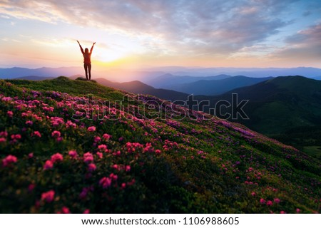 Hiker woman standing with hands up achieving the top. Girl welcomes a sun. Successful woman hiker open arms on sunrise mountain top. Magic pink rhododendron flowers on summer mountains Foto stock ©