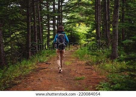 Hiker woman with backpack walking on path in summer forest, rear view #220084054