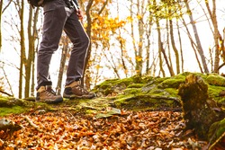 Hikers boots on forest trail. Autumn hiking. Close-up of male walking in trekking shoes on the background of leaves and trees. Travel, Sports, Lifestyle Concept.