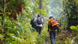 Hikers in rain forest jungle, trekking to beautiful waterfall. Selective focus