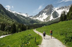 hikers in the Alps, France (Tour du Mont Blanc)