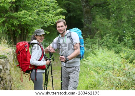 hikers standing in forest track ...