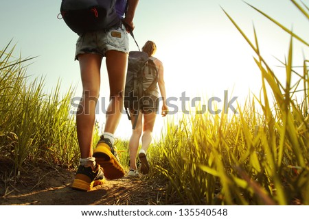 Hikers with backpacks walking through a meadow with lush grass