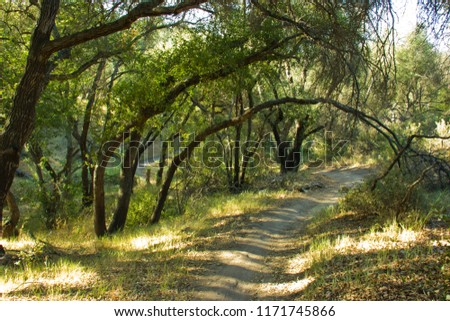 Hiking Along Path in Whiting Ranch Wilderness Park in Southern California
