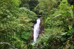 Hiking around the Gitgit Waterfalls, Bali, Indonesia, Asia - here the Mekalangan Waterfall.