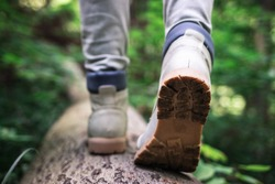 Hiking boot. Hiker walking at fallen tree trunk in forest. Tourist wearing leather shoes. Adventure in nature