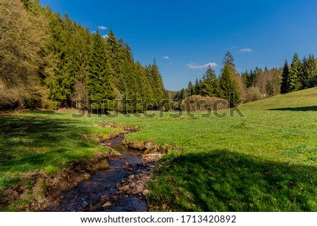Hiking in different places through the Thuringian Forest - Thüringer Wald / Germany Stock foto ©