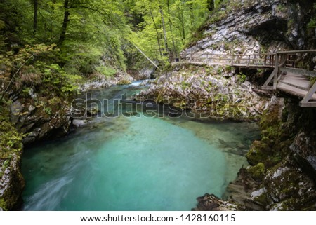 hiking in scenic valley of vintgar gorge in slovenia #1428160115