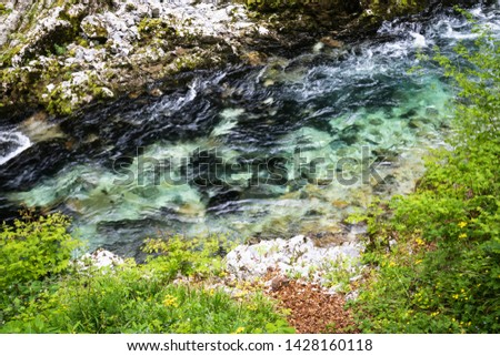 hiking in scenic valley of vintgar gorge in slovenia #1428160118
