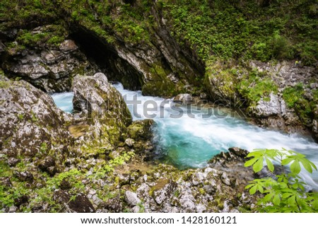 hiking in scenic valley of vintgar gorge in slovenia #1428160121