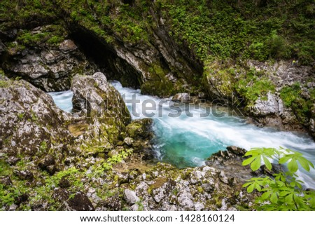 hiking in scenic valley of vintgar gorge in slovenia #1428160124