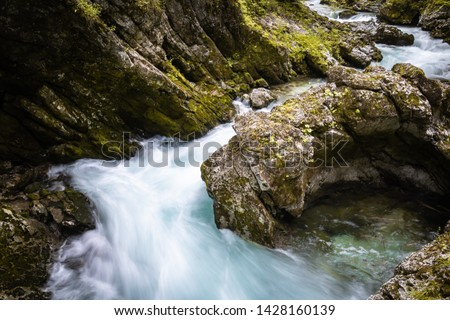 hiking in scenic valley of vintgar gorge in slovenia #1428160139