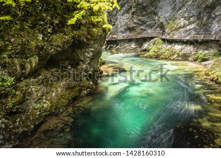 hiking in scenic valley of vintgar gorge in slovenia #1428160310