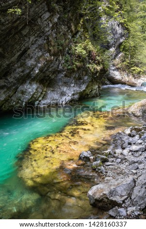 hiking in scenic valley of vintgar gorge in slovenia #1428160337