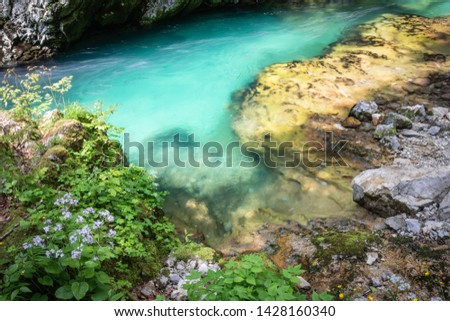 hiking in scenic valley of vintgar gorge in slovenia #1428160340