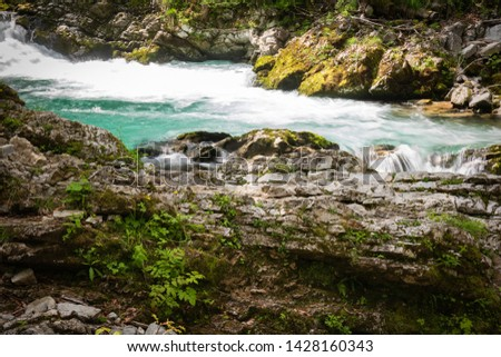 hiking in scenic valley of vintgar gorge in slovenia #1428160343