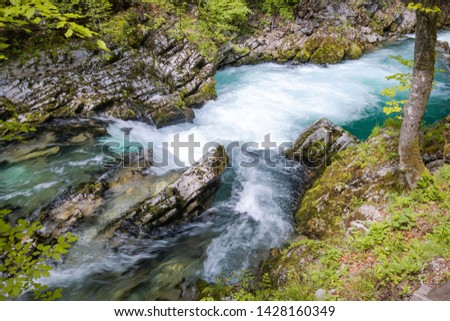 hiking in scenic valley of vintgar gorge in slovenia #1428160349