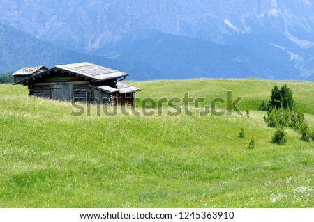 Hiking in the Dolomites #1245363910