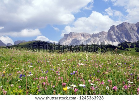 Hiking in the Dolomites #1245363928