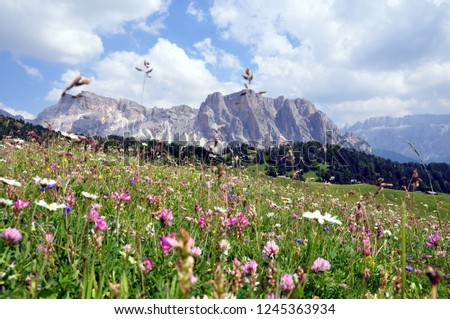 Hiking in the Dolomites #1245363934