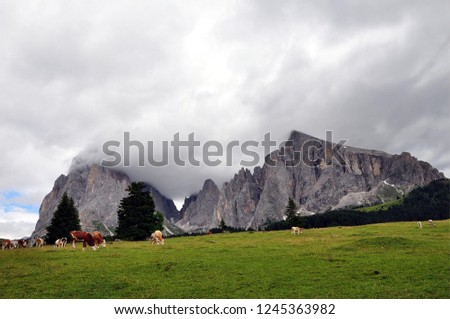 Hiking in the Dolomites #1245363982