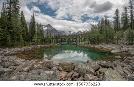 Hiking in the magnificent Lake O'hara, British Columbia, Canada #1507936220