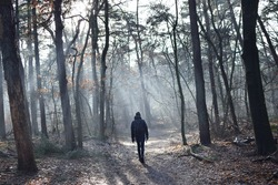 Hiking on a misty forest path, walking into the fog on a cold morning in winter season