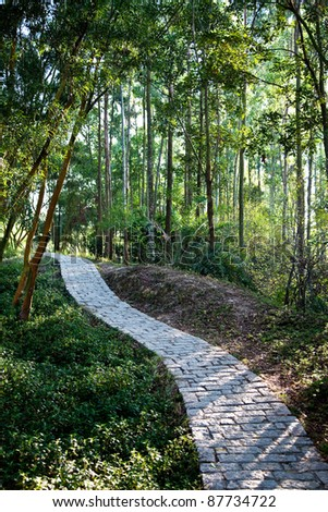 Hiking Path, Hong Kong