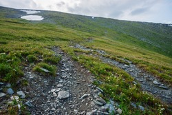 Hiking path through mountains. Trekking mountain trail. Atmospheric minimalist alpine landscape with stony footpath among snow and grasses in highlands. Pathway up hill. Way up mountainside. Scenery.