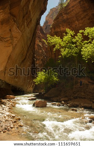 Hiking the Virgin Narrows, Zion National Park