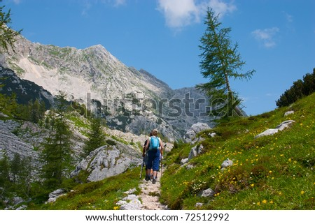 Hiking tourists in mountains