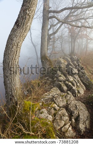 hiking trail along along a rocky ridge surrounded by fog and trees at autumn