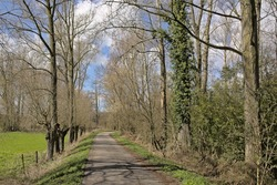 Hiking trail along meadow and forest in the Flemish countryside