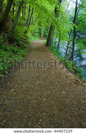 Hiking Trail by the River leading through a canopy of lush green trees.