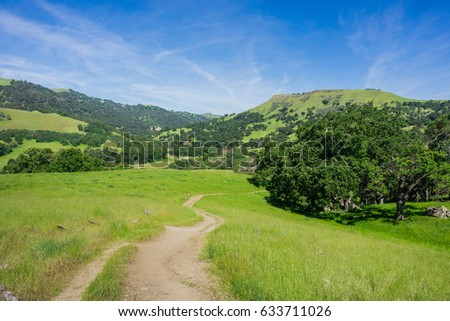 Hiking trail in Sunol Regional Wilderness, San Francisco bay area, California Stockfoto ©