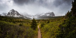 Hiking Trail in the Iconic Mt Assiniboine Provincial Park near Banff, Alberta, Canada. Canadian Mountain Landscape Background Panorama. Cloudy Dramatic Rainy Day.